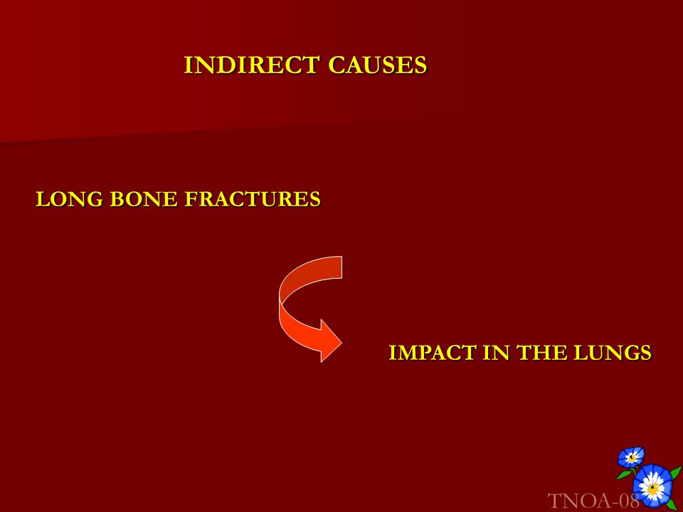 INDIRECT CAUSES LONG BONE FRACTURES IMPACT IN THE LUNGS TNOA-08