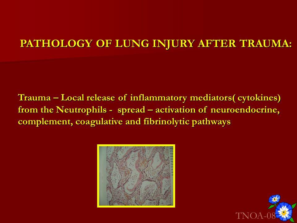 PATHOLOGY OF LUNG INJURY AFTER TRAUMA: