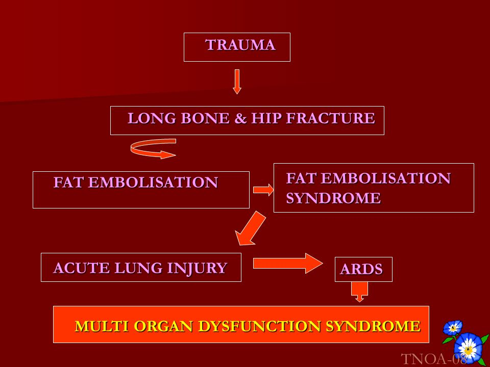 TRAUMALONG BONE & HIP FRACTURE. FAT EMBOLISATION. SYNDROME. FAT EMBOLISATION. ACUTE LUNG INJURY. ARDS.