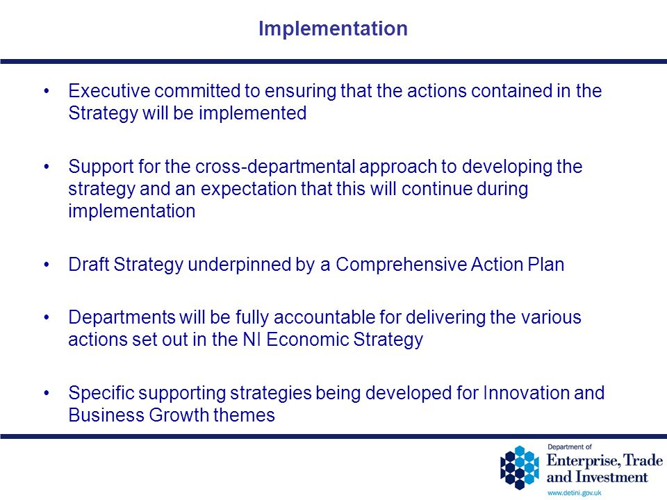 Implementation Executive committed to ensuring that the actions contained in the Strategy will be implemented.