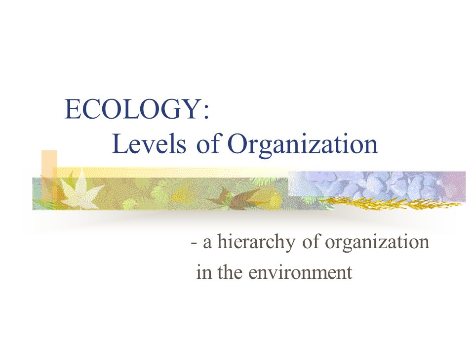 ECOLOGY: Levels of Organization