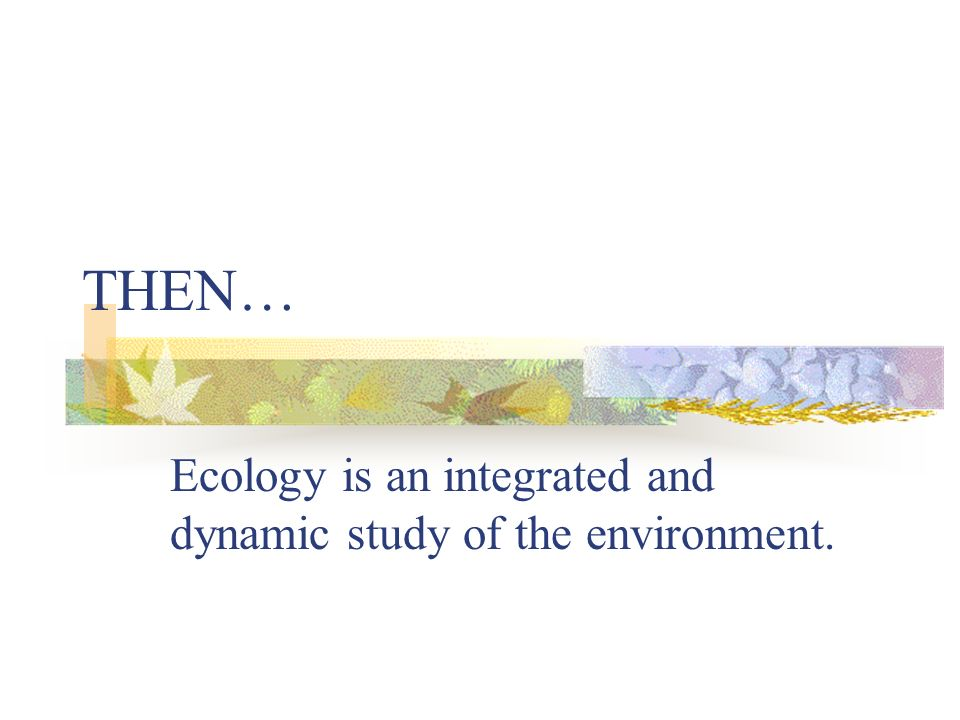 Ecology is an integrated and dynamic study of the environment.