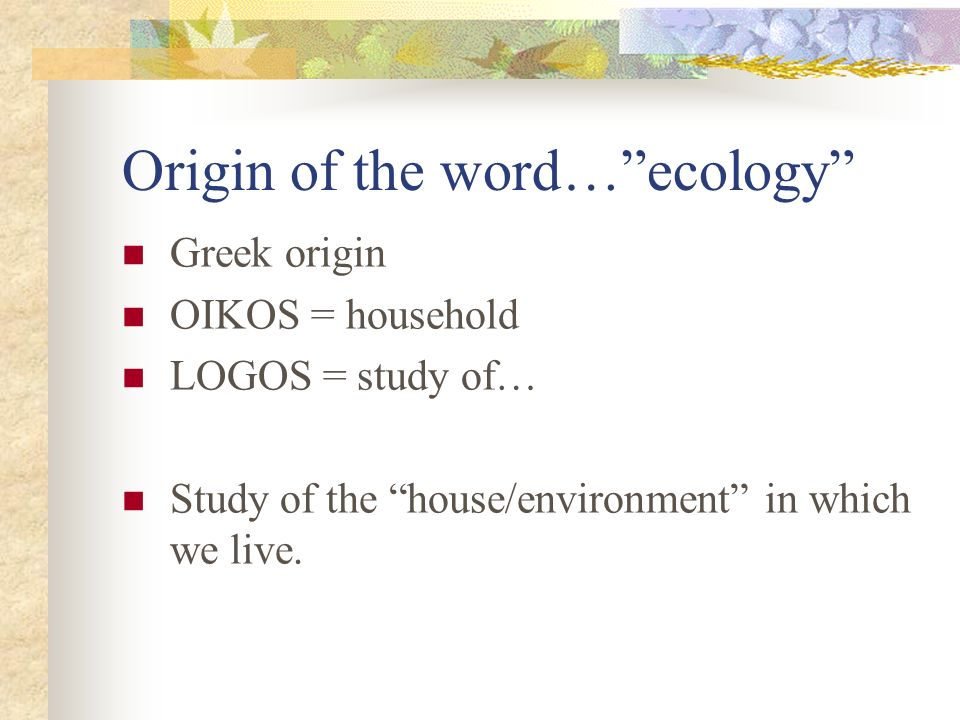 Origin of the word… ecology