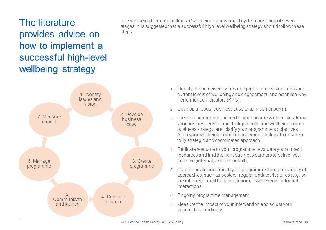 The literature provides advice on how to implement a successful high-level wellbeing strategy