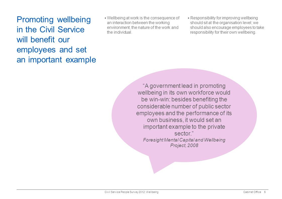 Foresight Mental Capital and Wellbeing Project, 2008