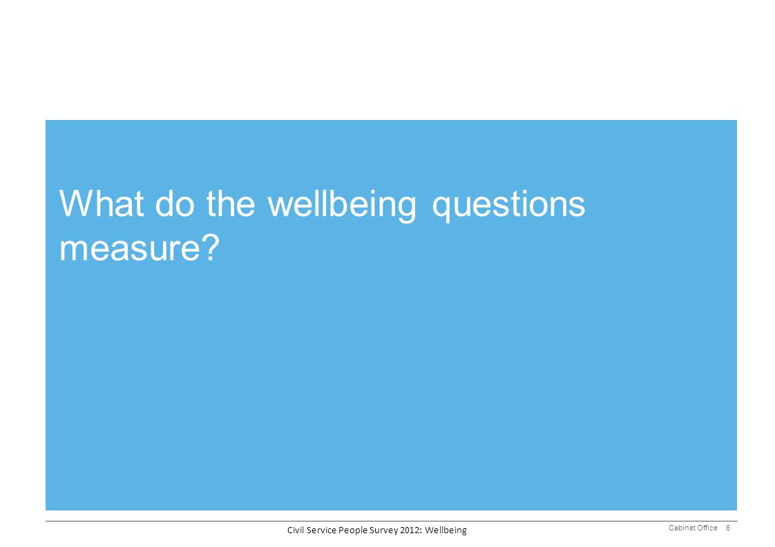 What do the wellbeing questions measure