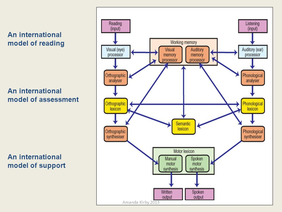 An international model of reading An international model of assessment