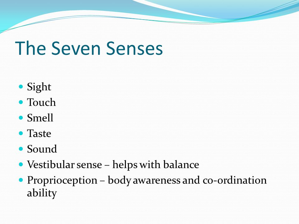 The Seven Senses Sight Touch Smell Taste Sound