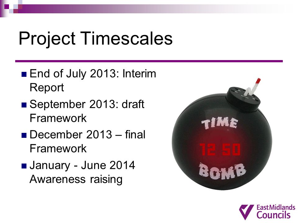Project Timescales End of July 2013: Interim Report