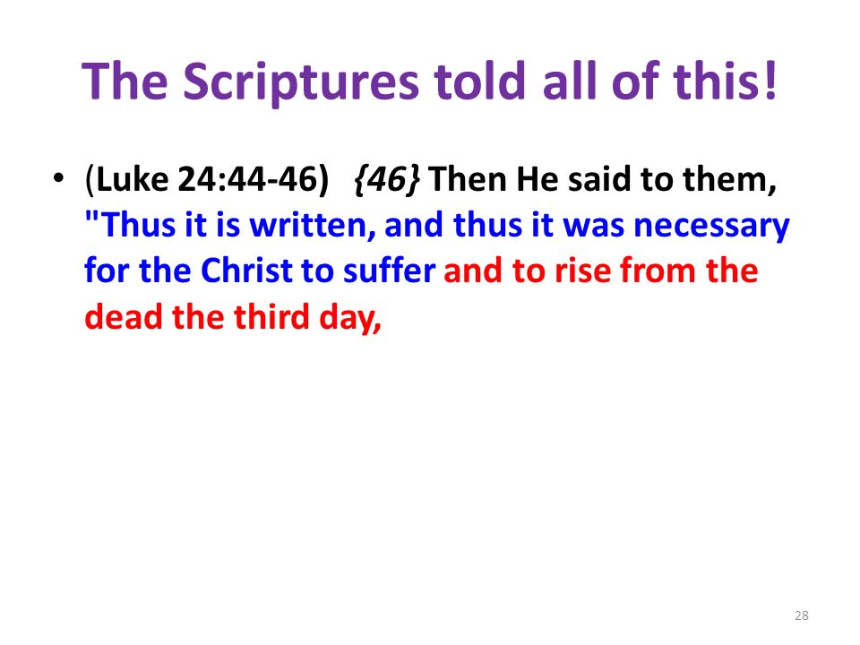 The Scriptures told all of this!