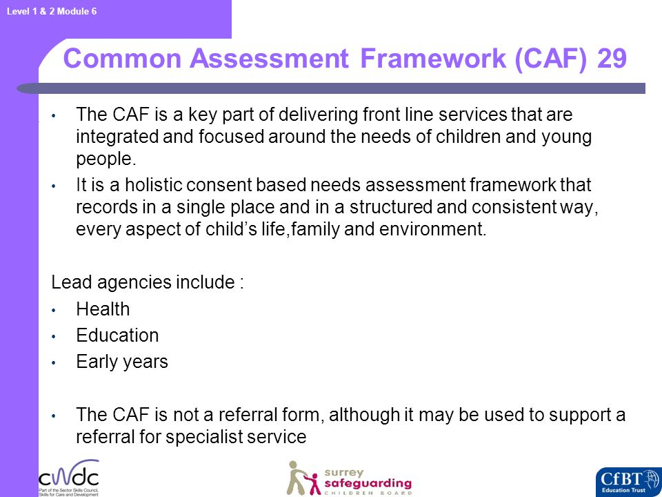 Common Assessment Framework (CAF) 30