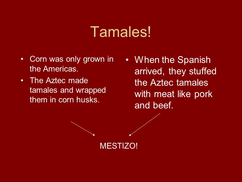 Tamales!Corn was only grown in the Americas. The Aztec made tamales and wrapped them in corn husks.