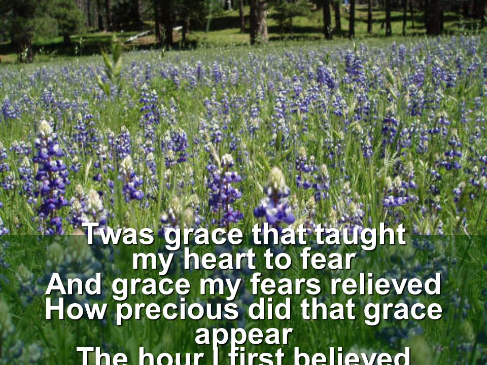 Twas grace that taught my heart to fear And grace my fears relieved How precious did that grace appear The hour I first believed