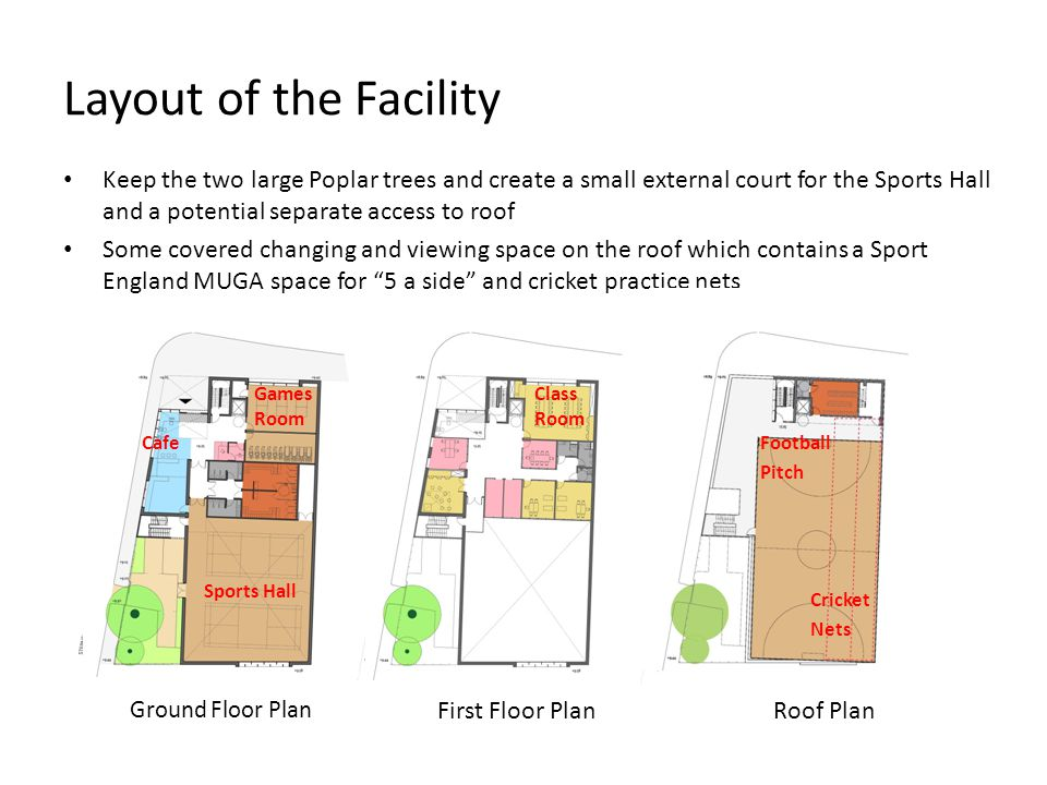 Layout of the Facility Keep the two large Poplar trees and create a small external court for the Sports Hall and a potential separate access to roof.