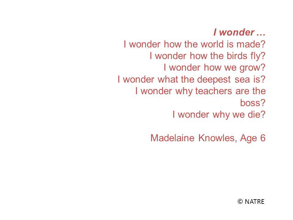 I wonder … I wonder how the world is made. I wonder how the birds fly