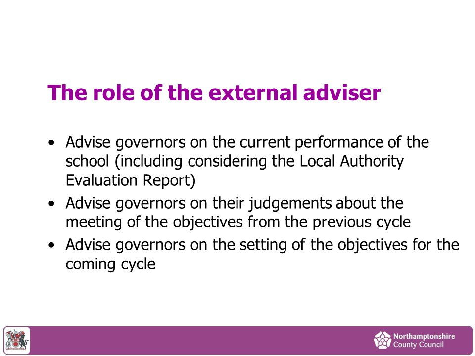 The role of the external adviser