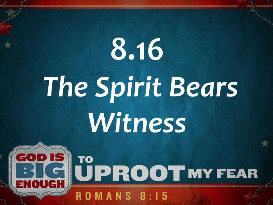 8.16 The Spirit Bears Witness