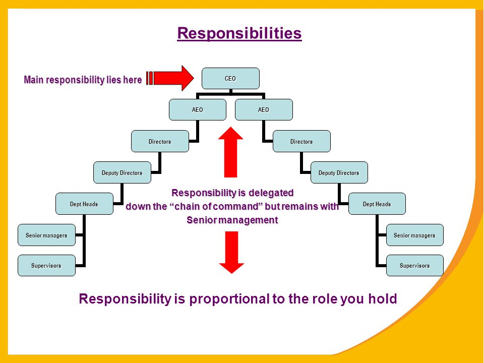 Responsibilities Responsibility is proportional to the role you hold
