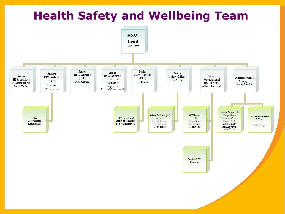 Health Safety and Wellbeing Team