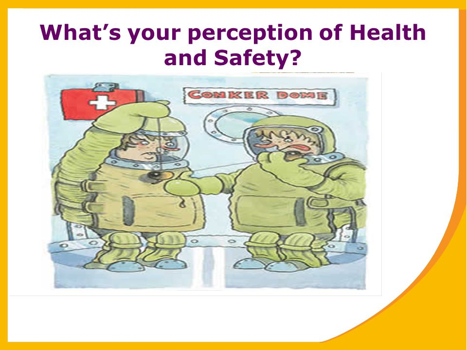 What's your perception of Health and Safety