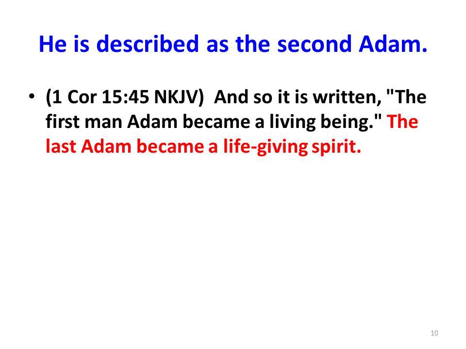 He is described as the second Adam.