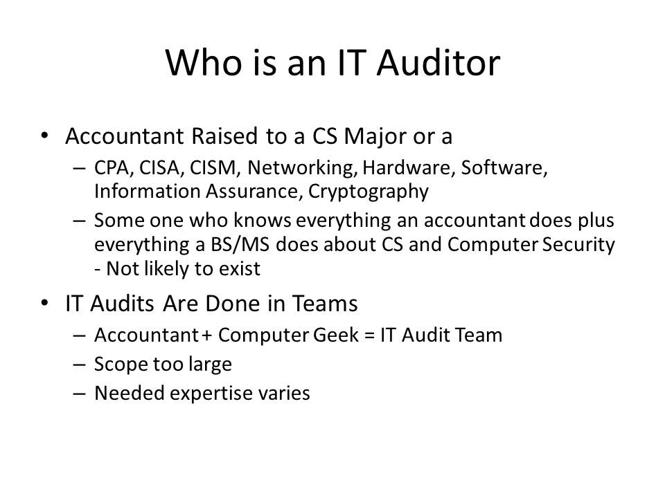 Who is an IT Auditor Accountant Raised to a CS Major or a
