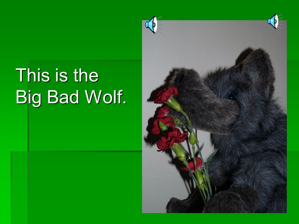 This is the Big Bad Wolf.