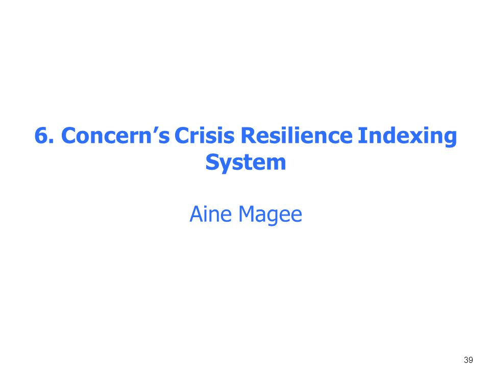 6. Concern's Crisis Resilience Indexing System