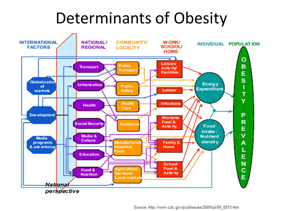 Determinants of Obesity
