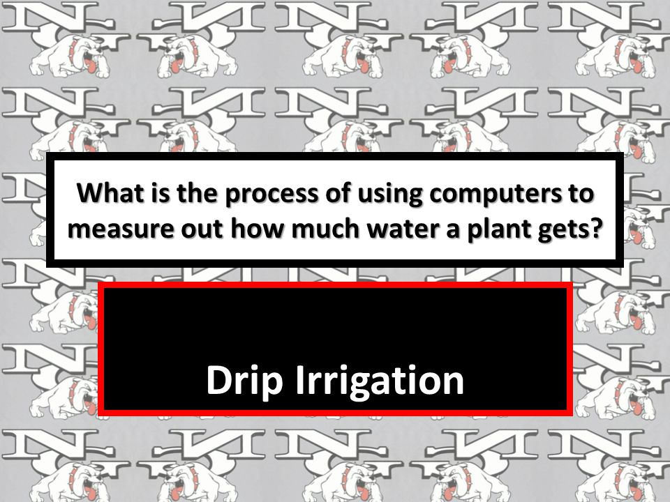 What is the process of using computers to measure out how much water a plant gets