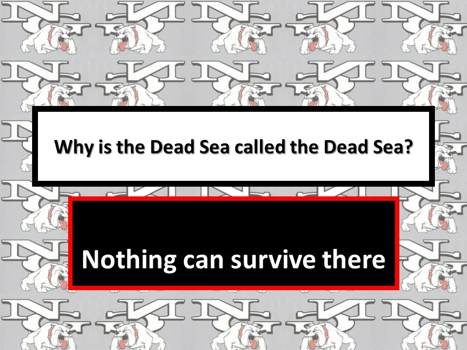 Why is the Dead Sea called the Dead Sea