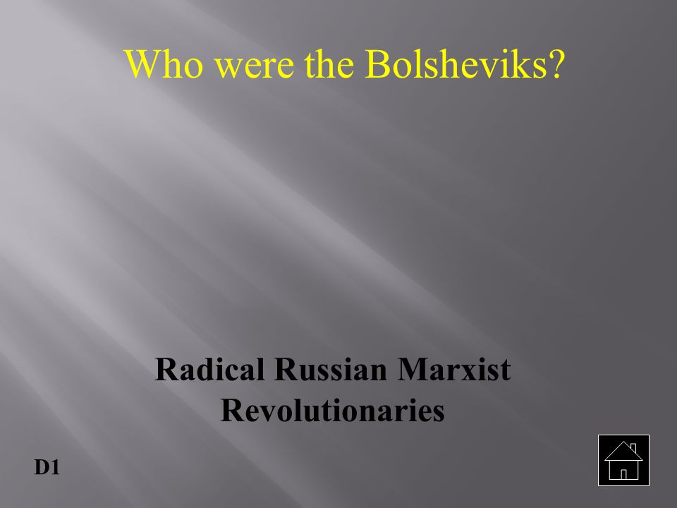 Radical Russian Marxist Revolutionaries