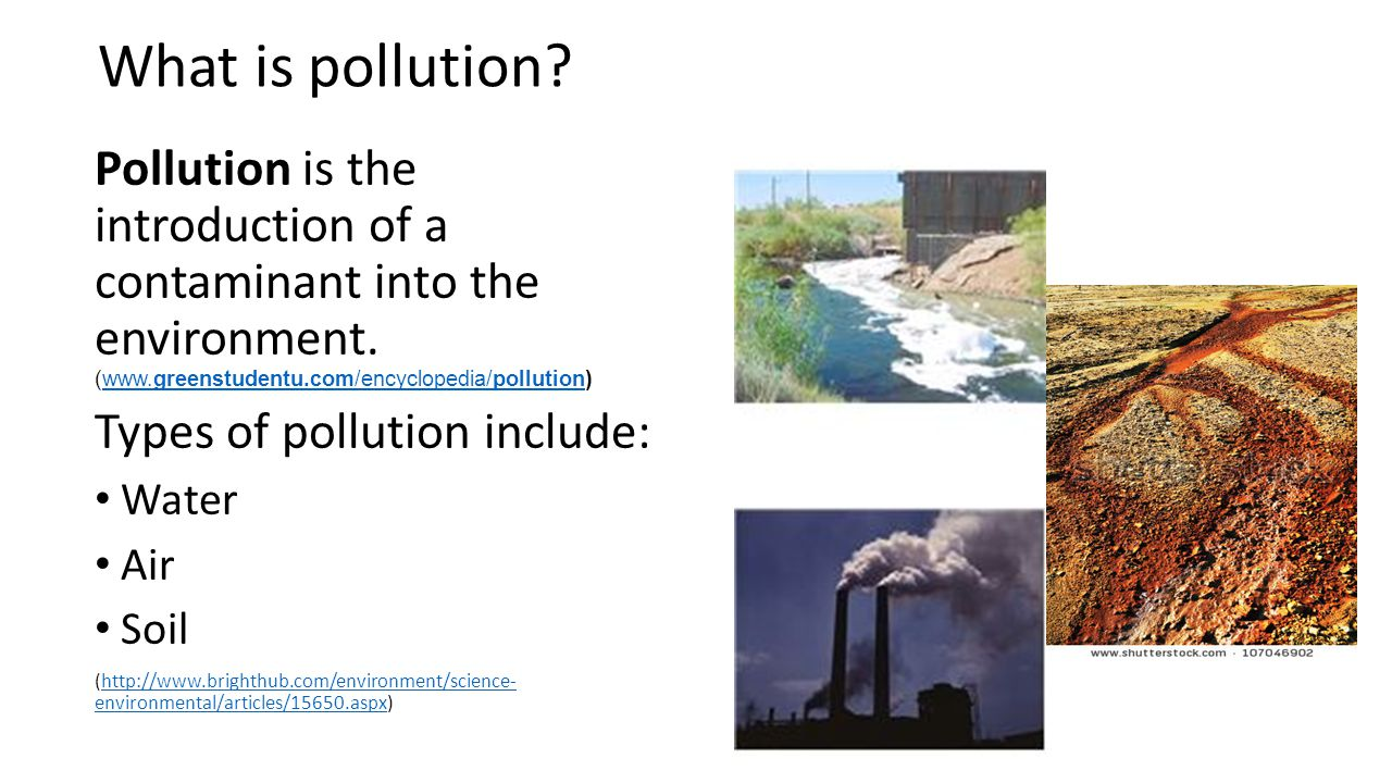 an introduction to the issues of water pollution Drinking water can be a source of exposure to chemicals caused by nutrient pollution drinking, accidentally swallowing or swimming in water affected by a harmful algal bloom can cause serious health problems including:.