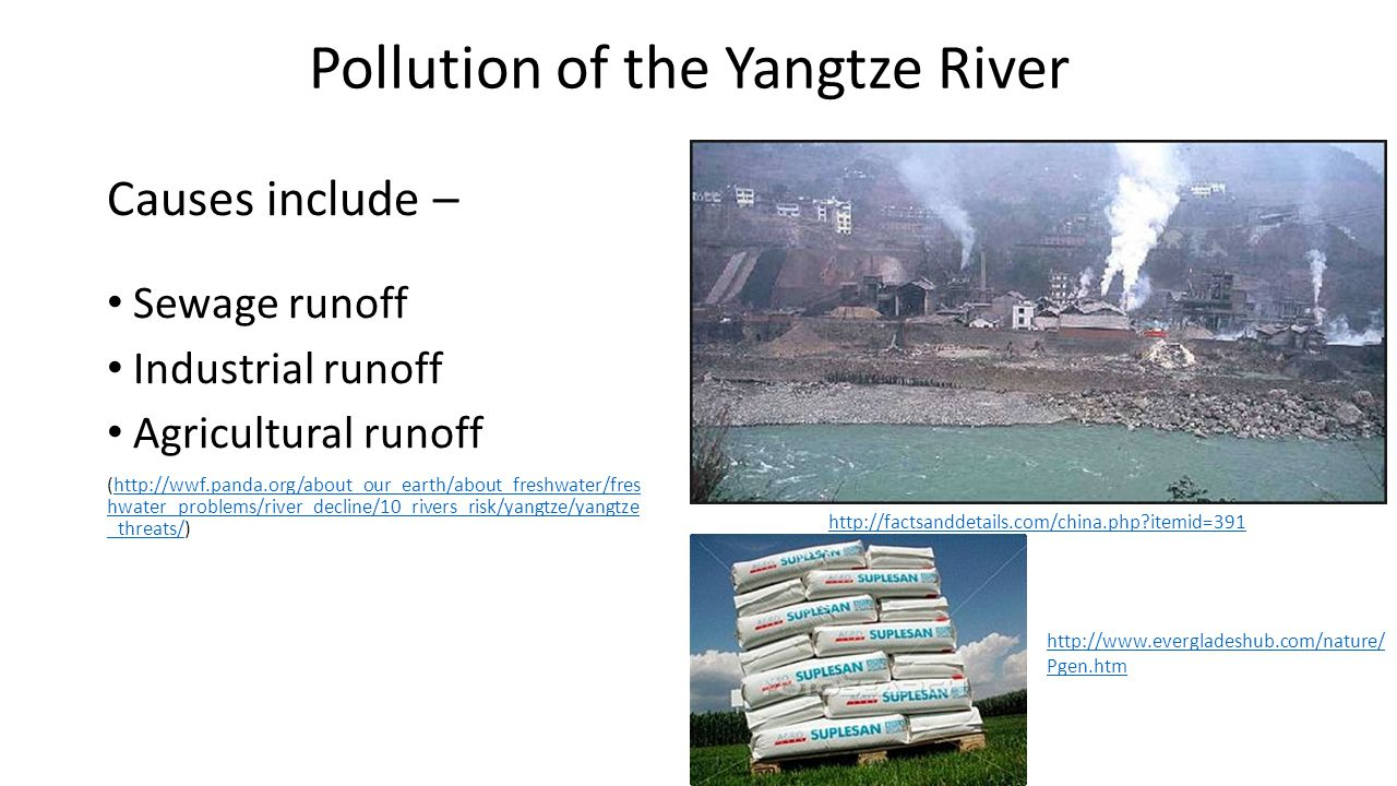 Pollution of the Yangtze River