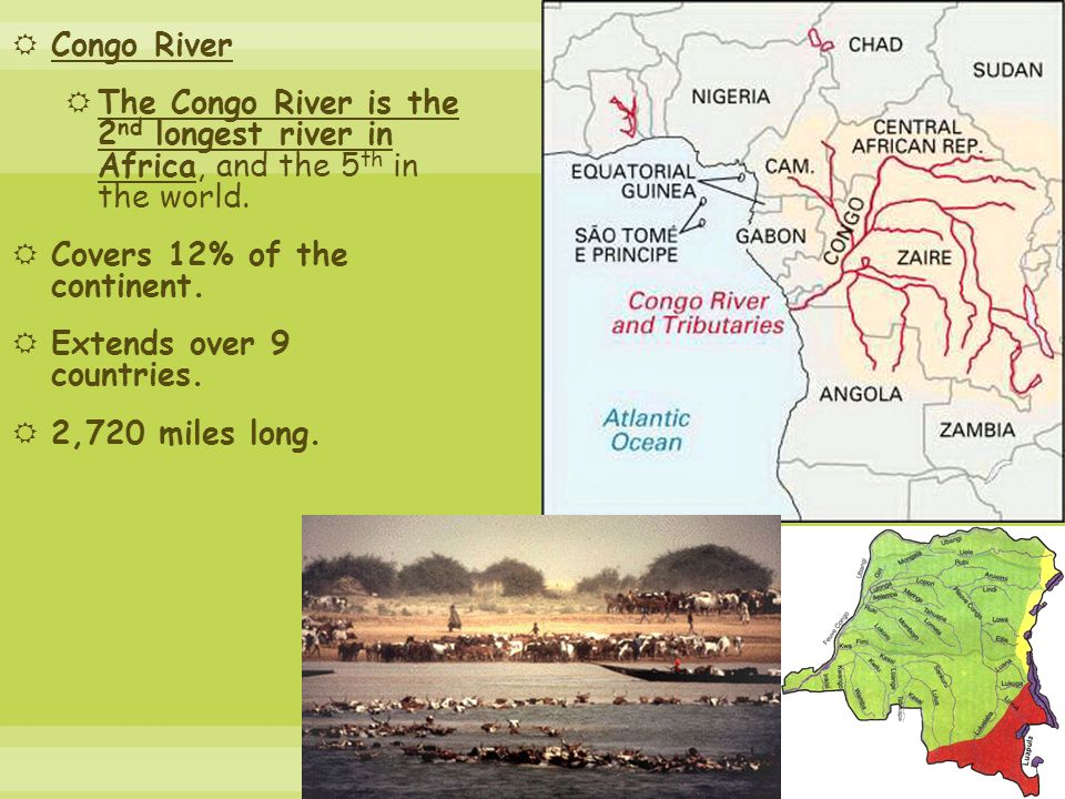 Congo River The Congo River is the 2nd longest river in Africa, and the 5th in the world. Covers 12% of the continent.