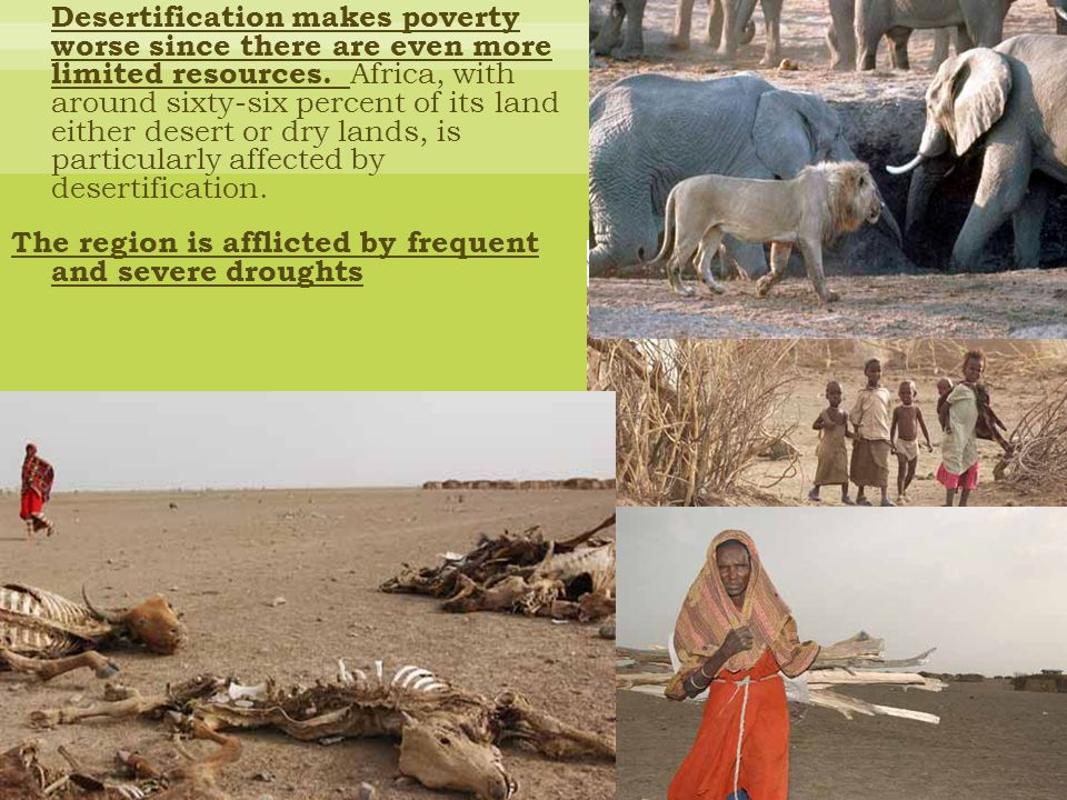 The region is afflicted by frequent and severe droughts