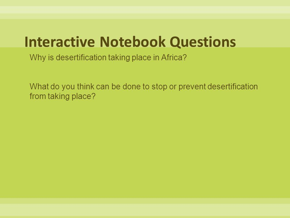 Interactive Notebook Questions