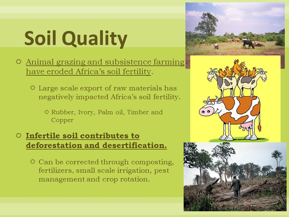 Soil Quality Animal grazing and subsistence farming have eroded Africa's soil fertility.