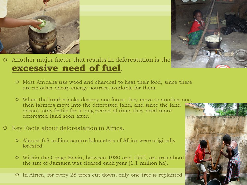 Key Facts about deforestation in Africa.
