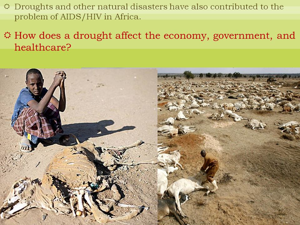 How does a drought affect the economy, government, and healthcare