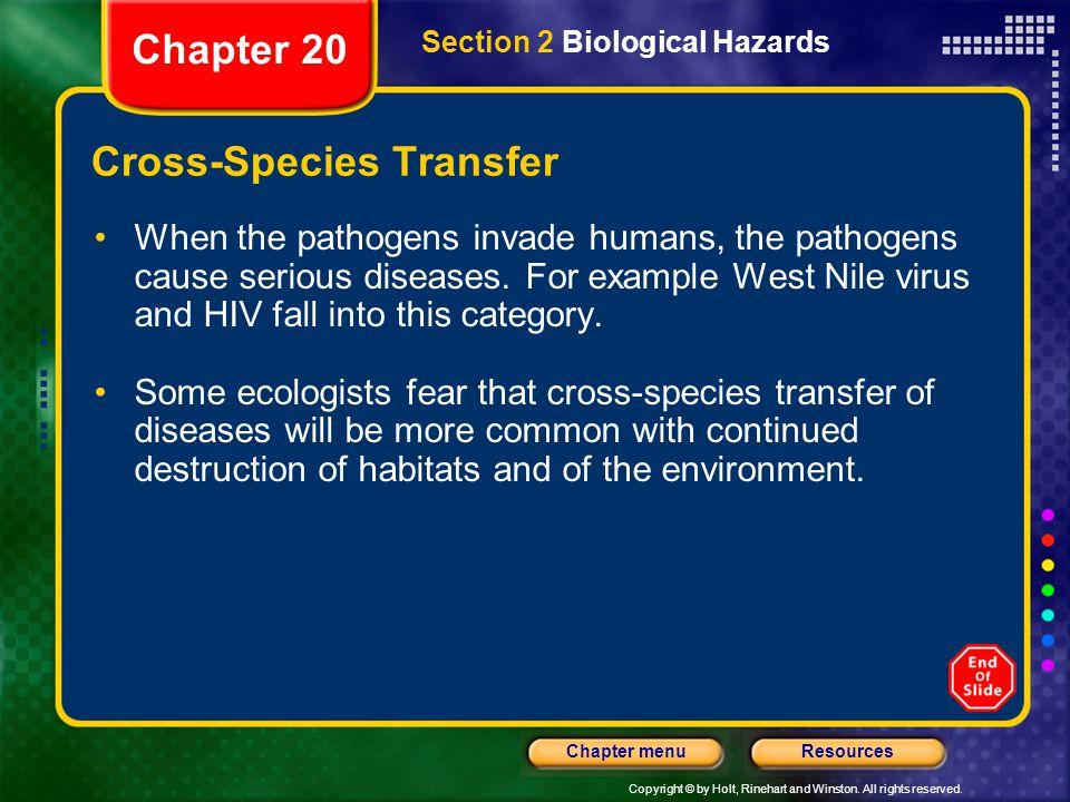 Cross-Species Transfer