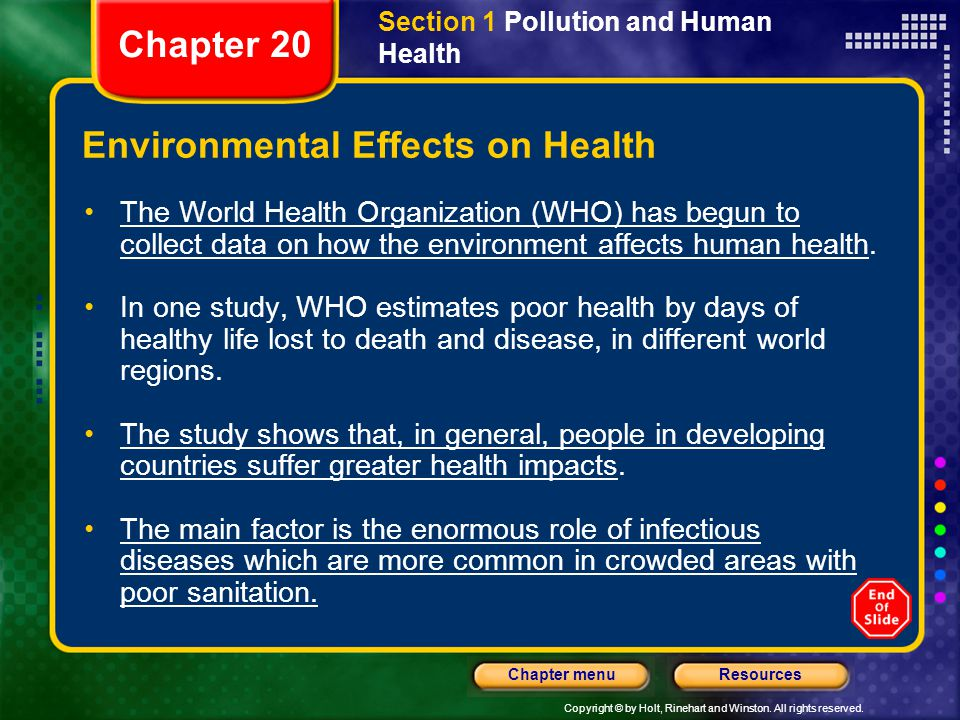 The Effects: Human Health