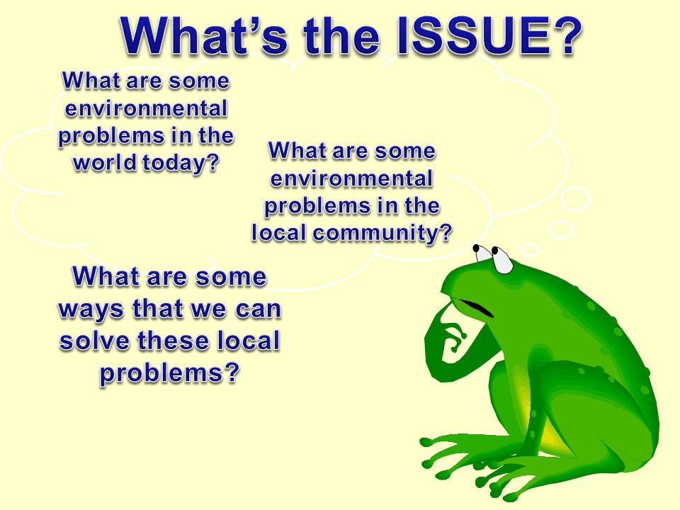 What's the ISSUE What are some environmental problems in the world today What are some environmental problems in the local community