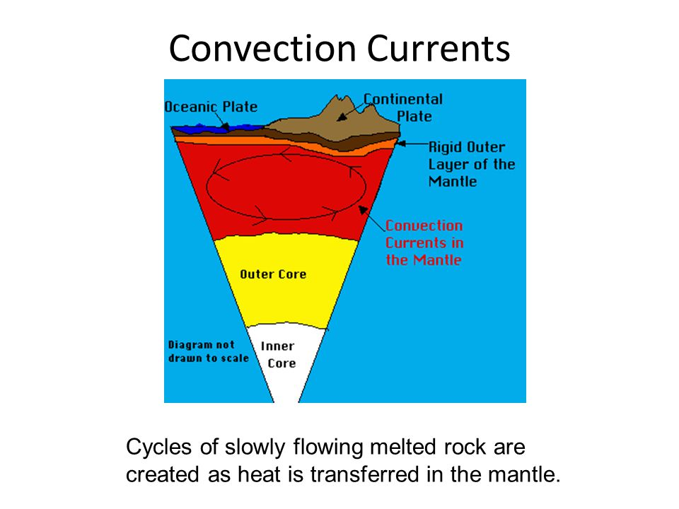 Convection Currents Cycles of slowly flowing melted rock are created as heat is transferred in the mantle.