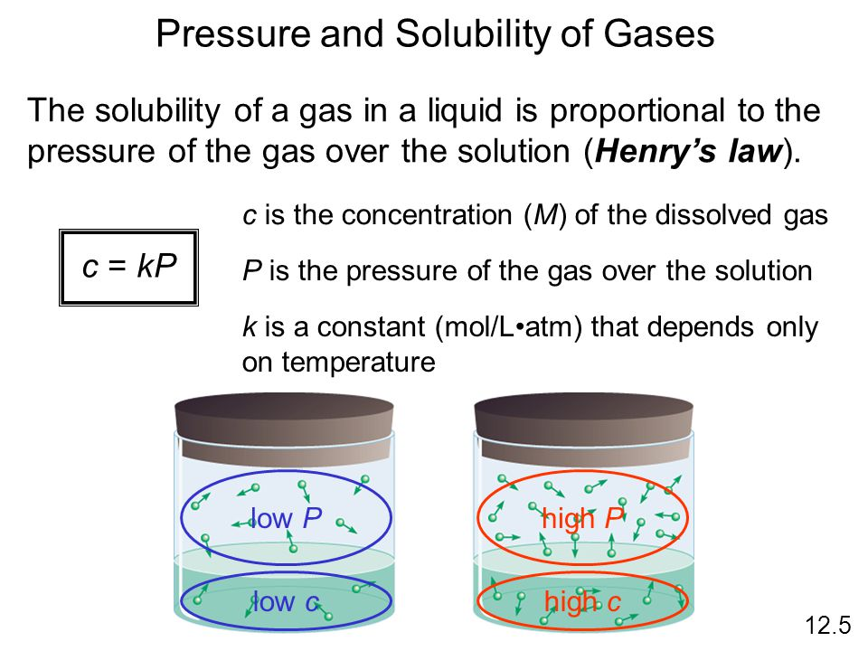 Pressure and Solubility of Gases