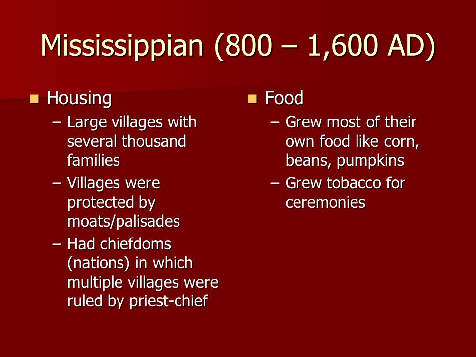Mississippian (800 – 1,600 AD) Housing Food