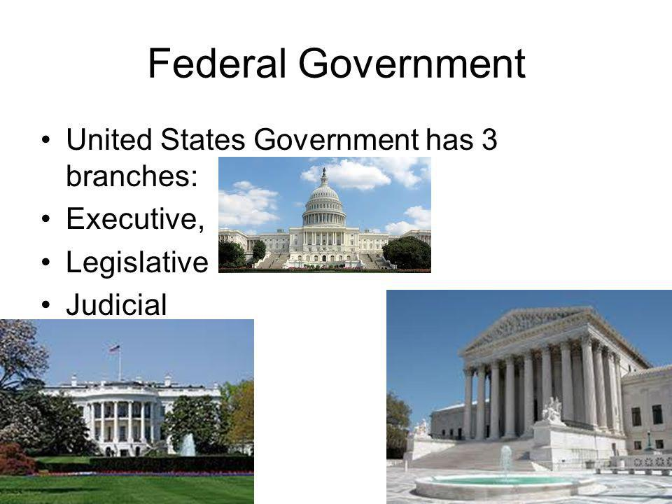 Federal Government United States Government has 3 branches: Executive,
