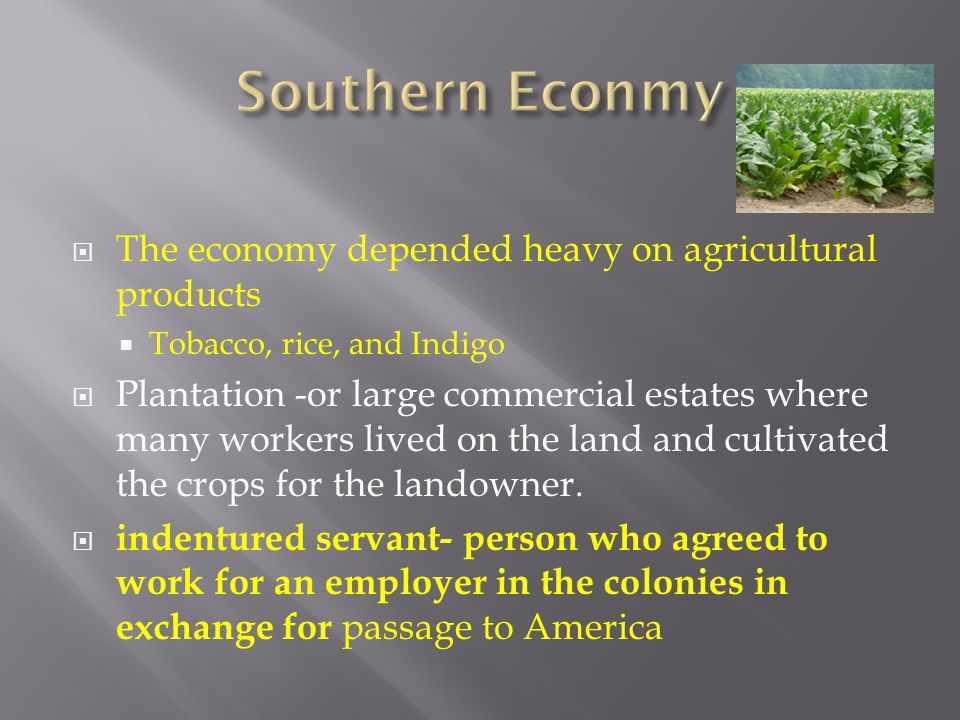 Southern Econmy The economy depended heavy on agricultural products