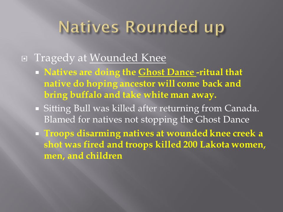 Natives Rounded up Tragedy at Wounded Knee