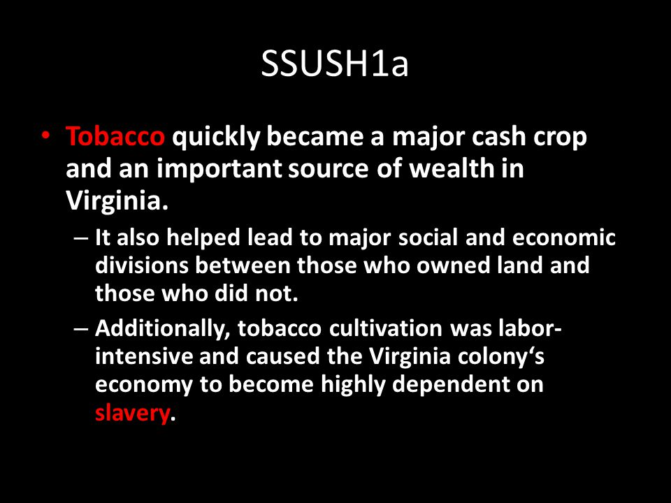 SSUSH1a Tobacco quickly became a major cash crop and an important source of wealth in Virginia.